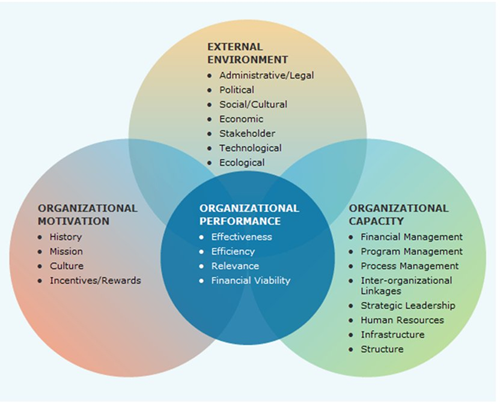 Organizational Assessment And Analysis